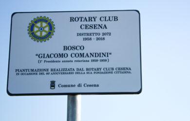 targa piantumazione Bosco - Giacomo Comandini